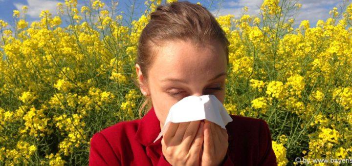 bayerischer-wald-allergikergeeignete-ferienwohnungen-allergiker-unterkunft-bayern