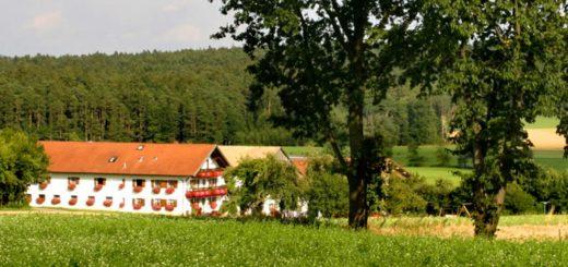 altmann-reiterhof-bayerischer-wald-ferienhaus-bauernhof-eschlkam