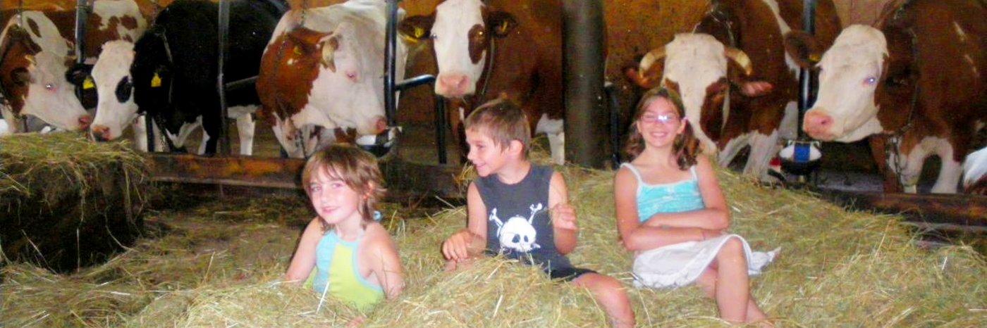 Bauernhof Urlaub in Zandt Unterkunft im Ferienhaus mit Badesee