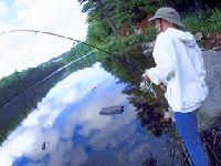 angeln an Seen Bayerischer Wald Flüsse