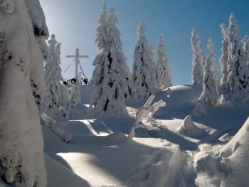 Wander Vorschläge im Bayerischen Wald