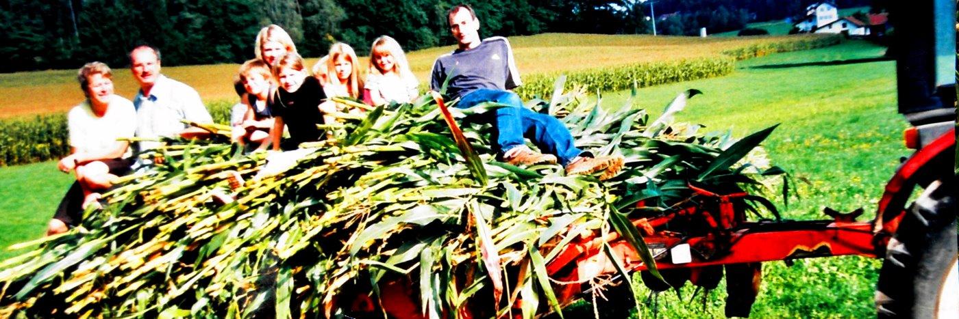 Kinderfreundlicher Bauernhof Urlaub in Bayern Landkreis Cham