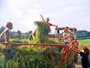 Urlaub auf dem Bauernhof in Kirchberg im Wald bei Regen Ferienhof Grafenau