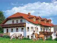 Bauernhofferien am Ferienbauernhof