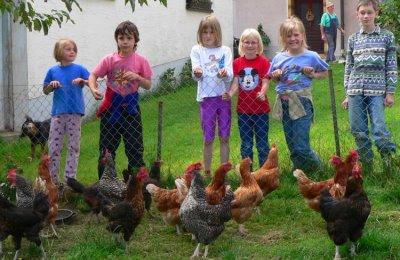 Ferien auf dem Bauernhof in Deutschland für Familien mit Kinder