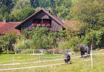Stuberhof in Brennberg bei Regensburg