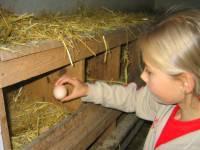Kinder Ferienhof im Bayerischen Wald