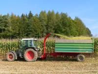Traktor fahren und am Feld mithelfen