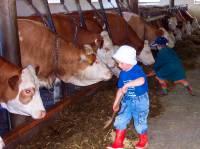 Babybauernhof in Bayern