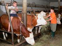 exklusiver Bauernhof Urlaub Bayerischer Wald