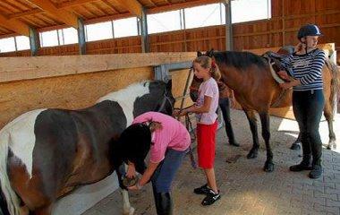 reiterferien für die ganze familie kinder Deutschland und Bayerwald