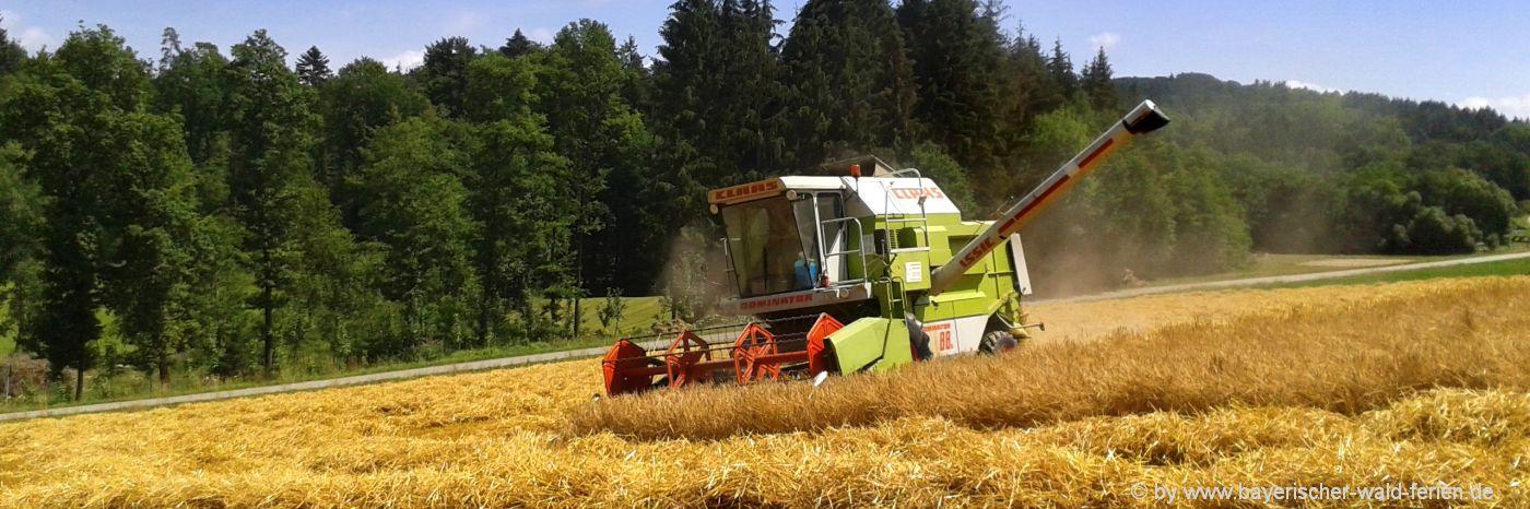 Erlebnisbauernhöfe in Niederbayern und Oberpfalz
