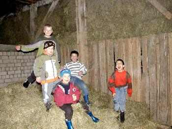 Urlaub Bauernhof Bayern - Spass im Heu