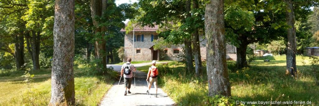 Bayerischer Wald Nordic-Walking Urlaub in Bayern