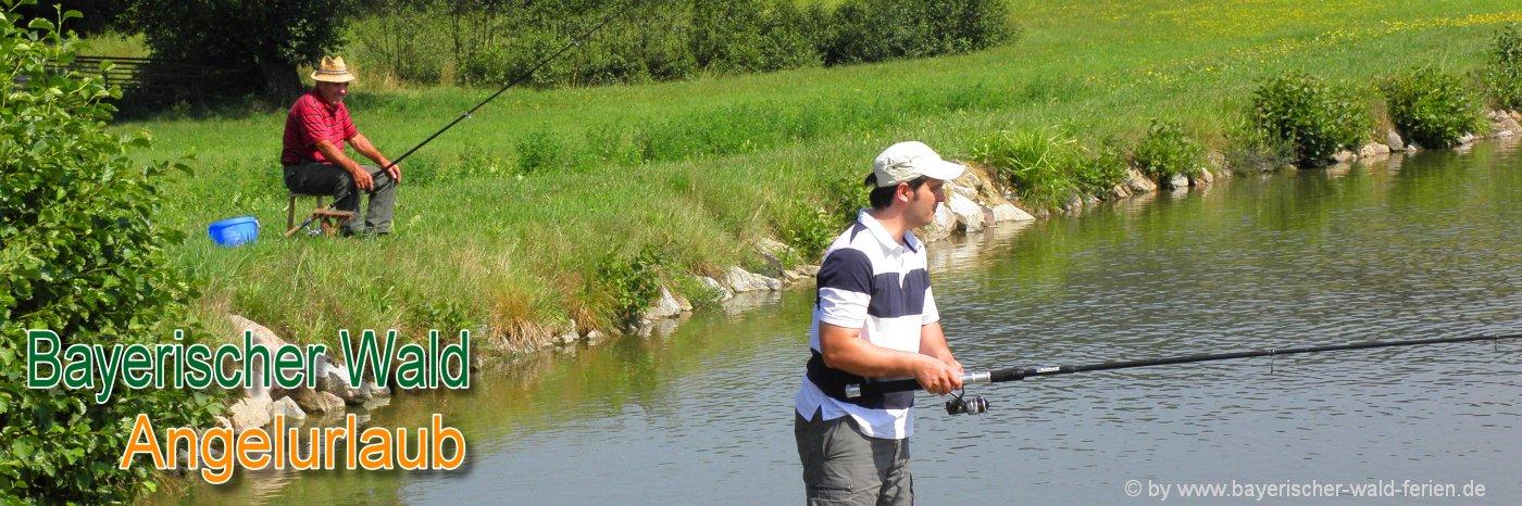 Angelgew sser ferienwohnung mit fischteich unterkunft for Teich mit fischen