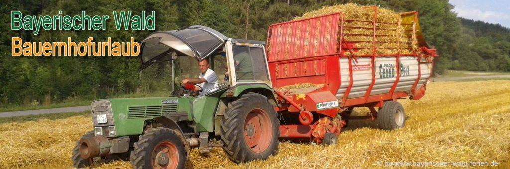 Bayerischer Wald Bauernhofurlaub für Famiien mit Kinder