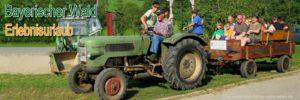 erlebnisbauernhof-bayerischer-wald-erlebnisurlaub-gruppenurlaub