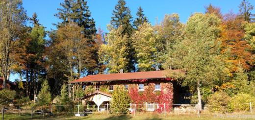 bayerischer-wald-ferienhaus-ferienhütten-herbsturlaub