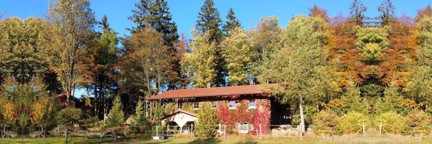 Ferienhäuser im uhrigem Stiel im Bayerischen Wald