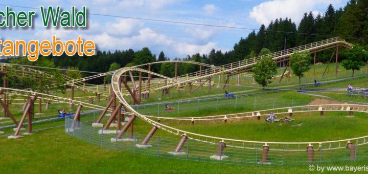 bayerischer-wald-freizeitangebote-bayren-sommerrodelbahn-erlebnisurlaub