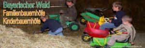 bayerischer-wald-kinderbauernhof-kuhstall-tiere-füttern-familienbauernhof