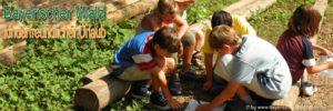 bayerischer-wald-kinderurlaub-spiel-spass-kinderfreundliche-unterkunft