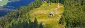 bayerischer-wald-osserwiese-bergwanderung-lam-highlights
