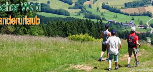 bayerischer-wald-wanderurlaub-aussichtspunkte-bergwanderungen