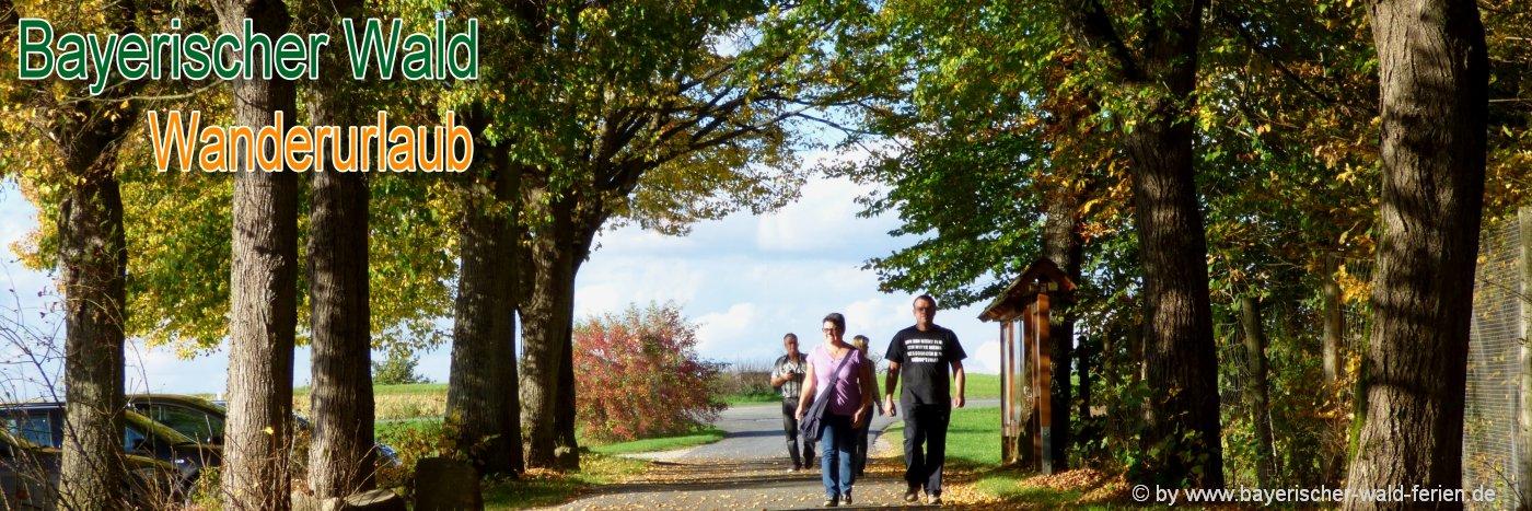 Bayerischer Wald Tagestouren Checkliste zum Rucksack für Tagestouren packen