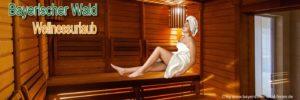 bayerischer-wald-wellnessurlaub-bayern-wellnesshotels-sauna