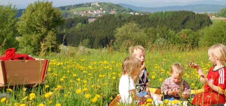 bayerwaldblick-bauernhof-bayerischer-wald-kinderurlaub-spielwiese