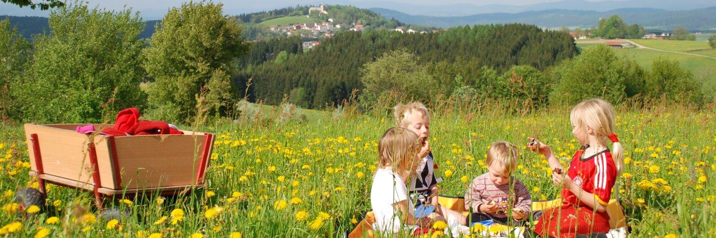 Bayerischer Wald Bauernhof Urlaub bei Deggendorf Ferienhof in Kirchberg im Wald