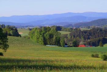 Wandern in Niederbayern Radeln, Reiten, Kutschenfahrten im Bayerischen Wald