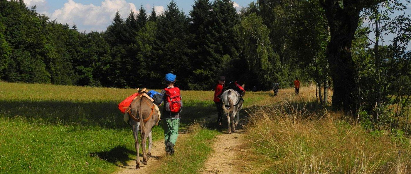 Hütte für 2 Personen in Bayern Eselwanderung Bayerischer Wald