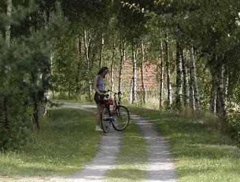 unsere Empfehlungen für Radsportler für gesunden Radurlaub in Bayern