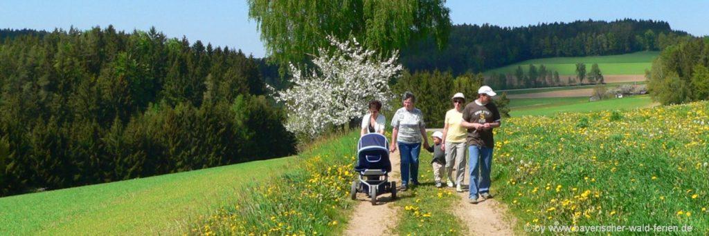 Bayerischer Wald Familienhotels für kinderfreundlichen Urlaub