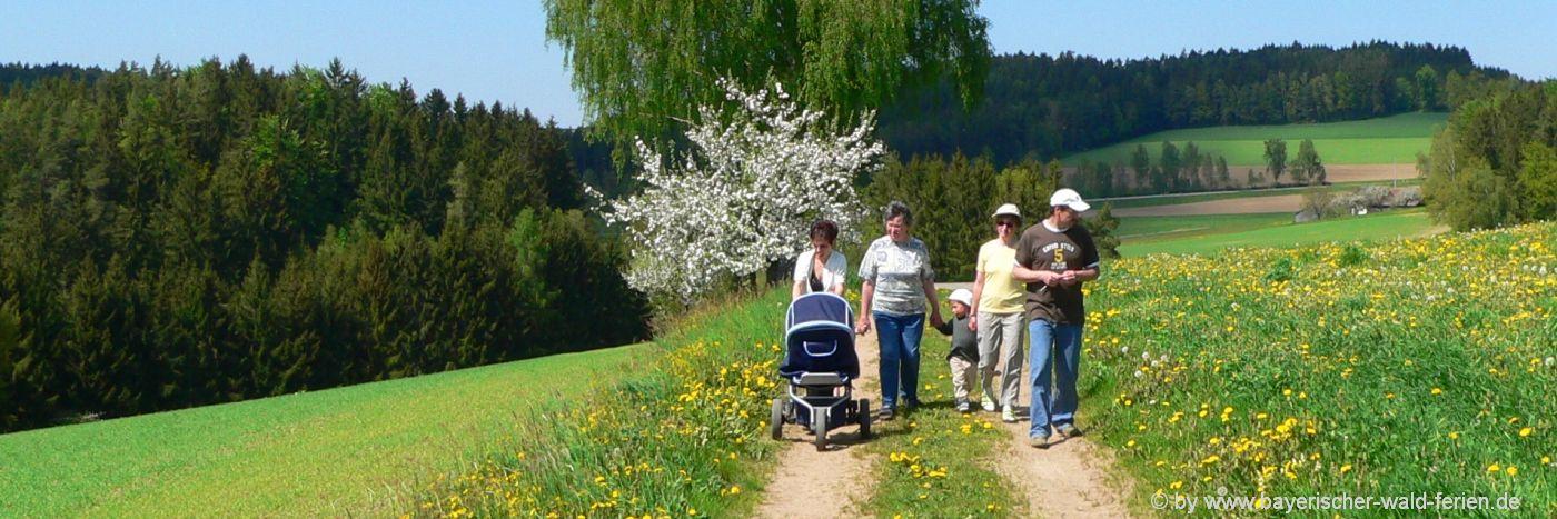 Familienurlaub Bayerischer Wald Familienfreundliche Hotels mit Kindern