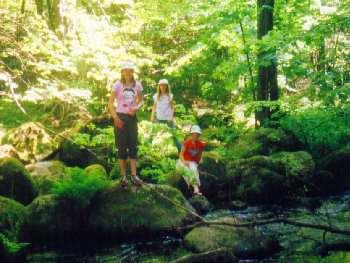 Aktivurlaub & Wanderurlaub auf dem Lande in Niederbayern