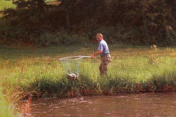 ferienwohnung-fischteich-eigenes-angelgewässer-fischfang