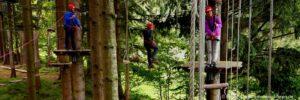 firmen-incentives-bayerischer-wald-firmenausflug-mitarbeiter-motivation-hochseilpark