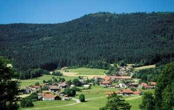 Pension Hirschenstein Pension Vogelsang Bayerwald Berg