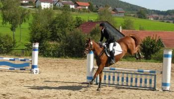 Unterricht im Springreiten und Pferde Dressur in der Oberpfalz