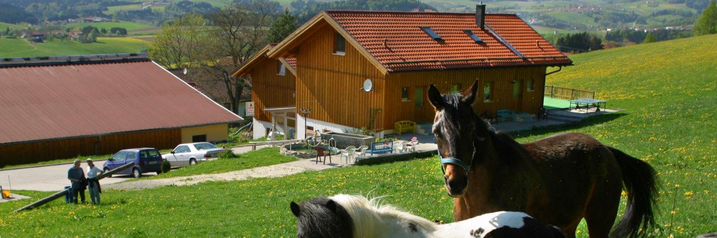 Komfort Ferienwohnung mit Hund in Bayern hundefreundlich Urlaub bei Passau