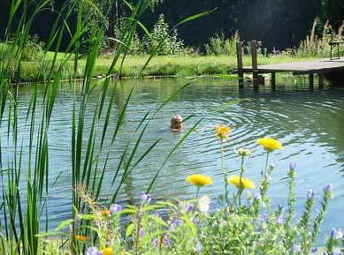 Gesundheitsurlaub im Bayerischen Wald in Deutschland - Naturbadeteich am Bauernhof Gammerhof