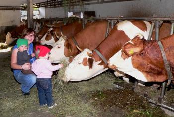 Bauernhofurlaub Herbst in Bayern