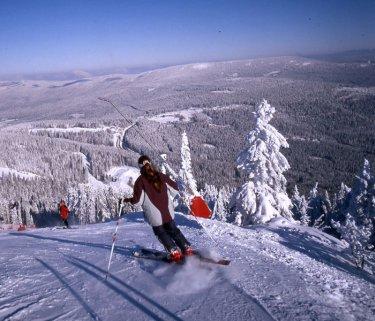 Winterferien mit Skifahren am Hohen Bogen Winkel und im Arberland
