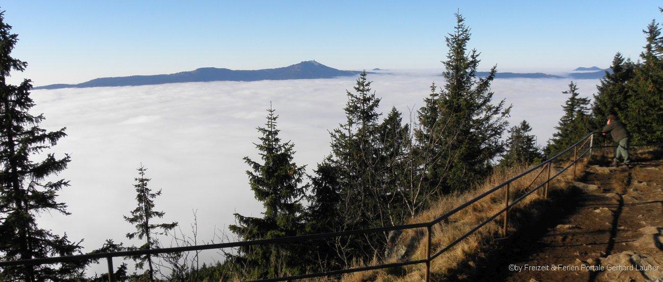 gruppenausflugsziele-nationalpark-bayerischer-wald-bergwanderung-falkenstein-wolkenmeer-1300