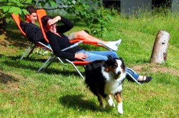 gut-feuerschwendt-neurirchen-vorm-wald-urlaub-mit-hund