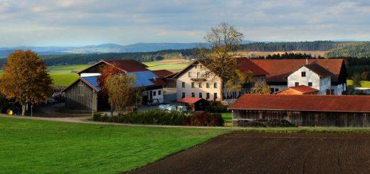 guthof-bayerischer-wald-erlebnisbauernhof-bayern-familienurlaub-hofansicht