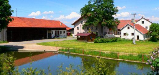 guthof-piendl-bauernhofurlaub-bayerischer-wald-familienferien